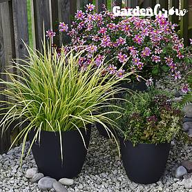 Garden Grow Set of 3 Self Watering Plant Pots